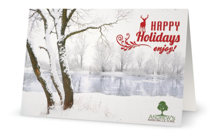 AA-2013-holiday-card