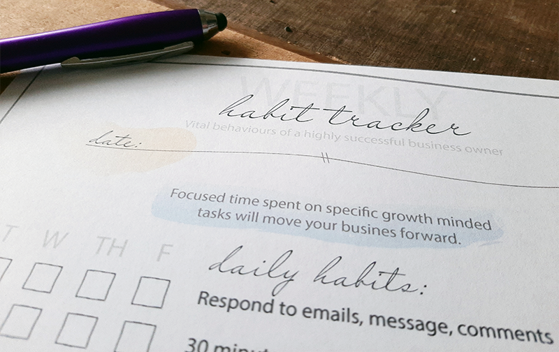 Daily/Weekly Habit Tracker for any business owner